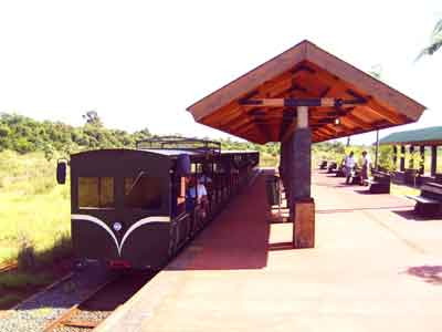 Parque Iguazú - tourist train
