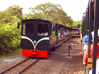 Parque Iguazú - meeting trains